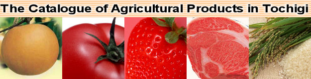 The Catalogue of Agricultural Products in Tochigi